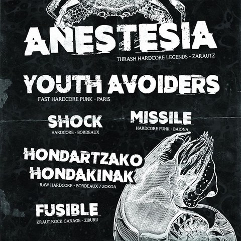 Anestesia + Youth Avoiders + Missile + Fusible + Shock + Hondartzako Hondakinak