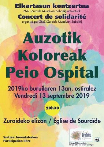 Auzotik + Koloreak + Peio Ospital