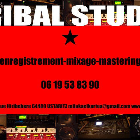 Tribal Studio
