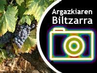 Concurso de fotografía del Biltzar de los fotógrafos 2010