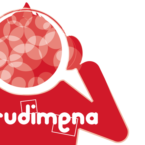 """""""Irudimena"""" sormen-lehiaketaren 4. edizioa abiatua da!"""