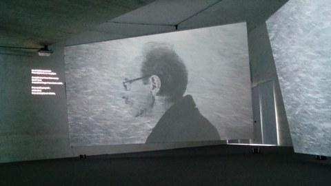 """""""Ikimilikiliklik"""" multimedia instalazioa Biarritzen"""