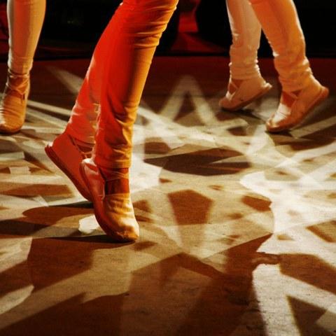 "Stage de danse ""Ekintzen aditzekin"""