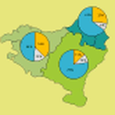Pratiques culturelles et identités collectives en Pays Basque