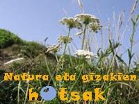 La culture basque dans son jardin