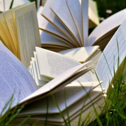 L'actualité de la littérature basque présentée aux professionnels de la lecture publique