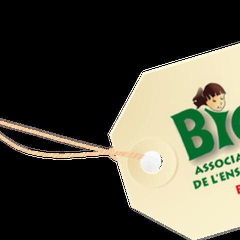 L'association Biga Bai recherche un(e) permanent(e)