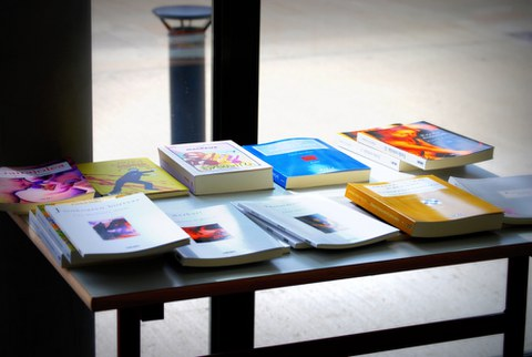 Les aides de l'Institut Etxepare pour la traduction d'oeuvres littéraires basques