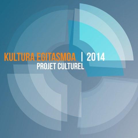 Projet culturel 2014 de l'ICB et décisions relatives aux demandes de partenariat émanant des associations membres